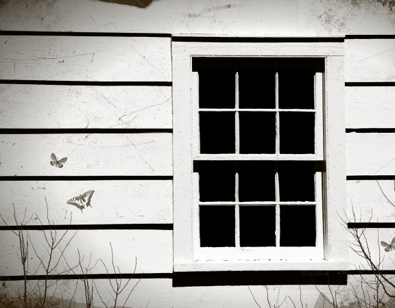 Close-up of an old window with room for text